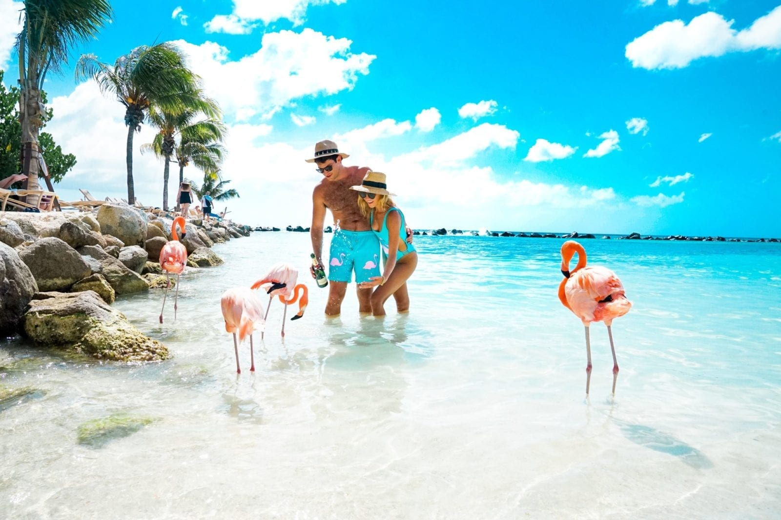 the ultimate jetset guide to aruba! - jetsetchristina